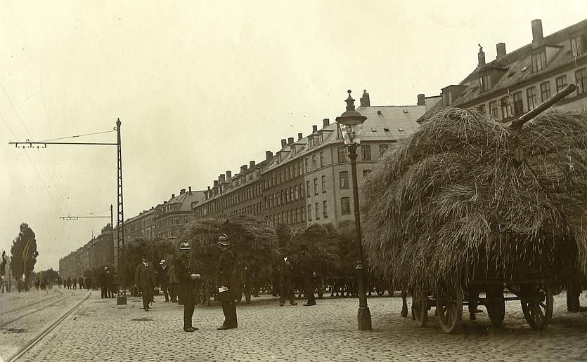 Halmtorvet. Foto af Orla Michael Bock. 1905 (Københavns Museum)