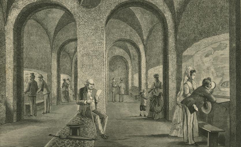 Københavns Akvarium kort efter indvielsen. Tegning af H. Olsen. (Illustreret Tidende 1872-73)